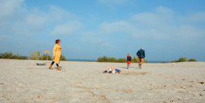 muriel-van-hoek-favoriet-strand-gezin